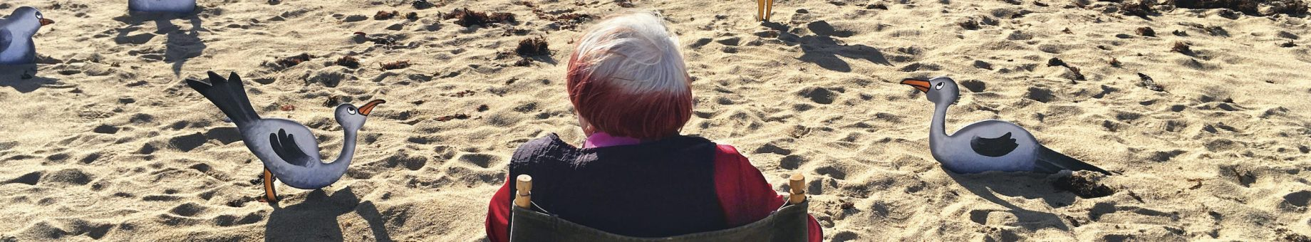 VARDA BY AGNES IN PANORAMA.DOC PROGRAMME